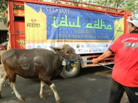 AGP Bagikan Ratusan Daging Kurban di Pelosok Indonesia