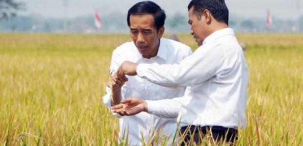 2045 Indonesia Optimistis Jadi Lumbung Pangan Dunia